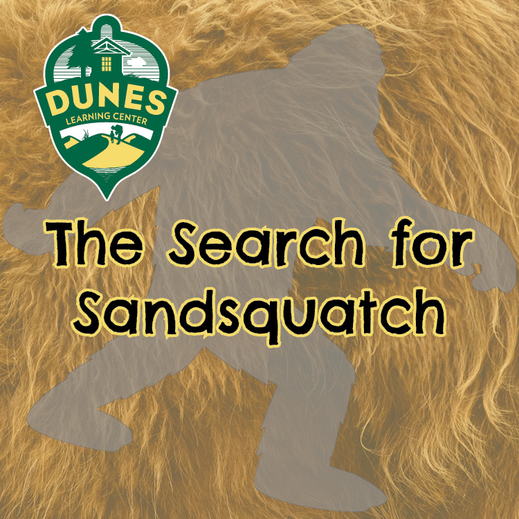 The Search for Sandsquatch